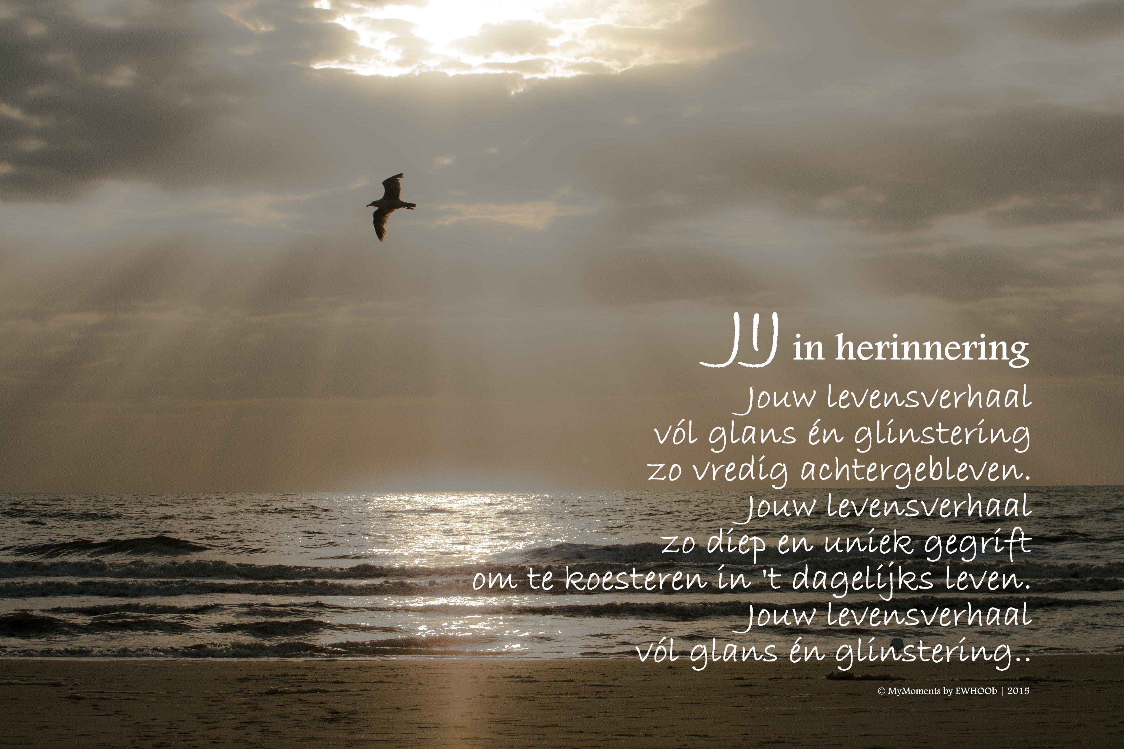 Verbazingwekkend Foto's en gedichten - ewhoob.nl EU-95
